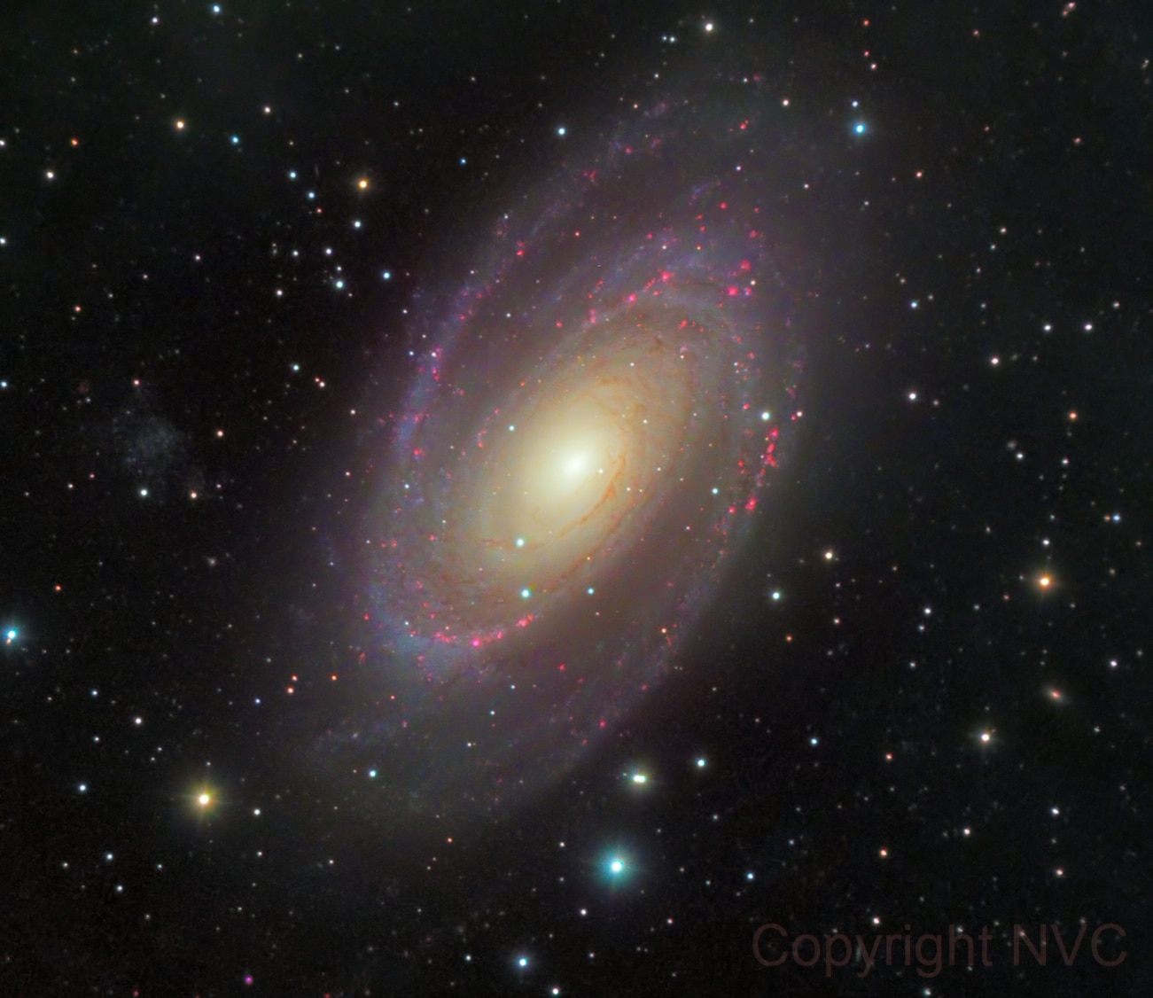 M81 Bodes Galaxy (Crowd image)