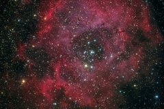 Rosette Nebula NP127is